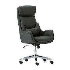 Best Ergonomic Home Office Chair with Lumbar Support