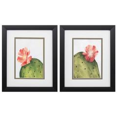 Arid Bloom Wall Art, Pack Of 2