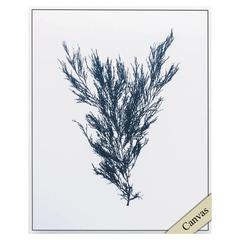 Indigo Seas Ii Wall Art