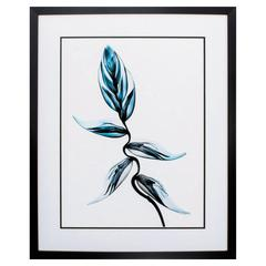 Xray Botanical Ii Wall Art