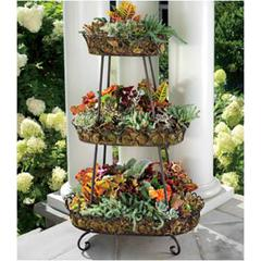 Oval Wrought Iron Plant Stand