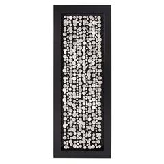 Chrome Coins Mounted on Black Frame Rectangle Wall Art