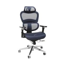 Core Collection Ergo Mesh Office Chair with Head Rest for Computer Desk, Blue