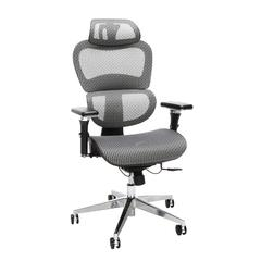 OFM Core Collection Ergo Office Chair featuring Mesh Back and Seat with Head Rest, in Gray (540-GRY)