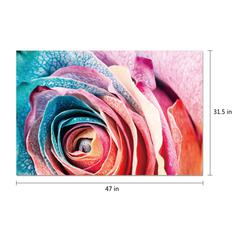 "Rosalia 1 Piece Wrapped Canvas Wall Art Giclee Print Modern Multi Color Photographic Rose Petals in Bloom Floral Theme Stretched Ready to Hang, 47"" x 31.5"""