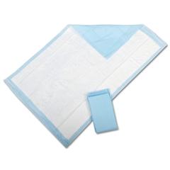 Protection Plus Disposable Underpads, 300/CS