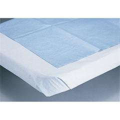 2-Ply All Tissue Drape Sheets,White,Not Applicable, 100/CS
