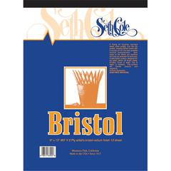 9 x 12 Vellum Finish Bristol Board Pad
