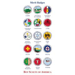It Takes Two Scouts of America Merit Badges Stickers
