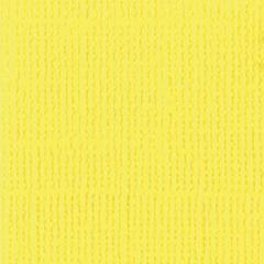 8.5 x 11 Textured Cardstock Lemonade