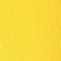 12 x 12 Textured Cardstock Glow