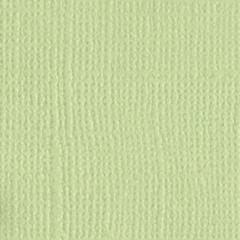 Bazzill Monochromatic 12 x 12 Textured Cardstock Aloe Vera