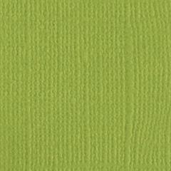 Bazzill Monochromatic 12 x 12 Textured Cardstock Parakeet