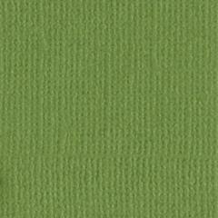 12 x 12 Textured Cardstock Leapfrog