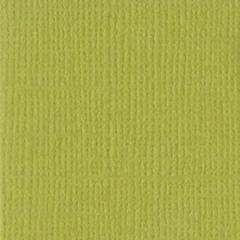 8.5 x 11 Textured Cardstock Lizard