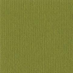 Bazzill Monochromatic 12 x 12 Textured Cardstock Saguaro