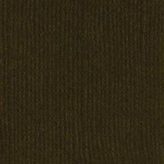 12 x 12 Textured Cardstock Pinecone