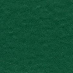 8.5 x 11 Cardstock Classic Green