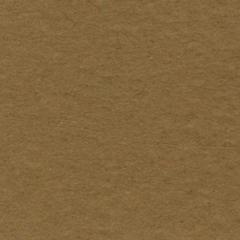 Bazzill Prismatics 8.5 x 11 Cardstock Tawny Med