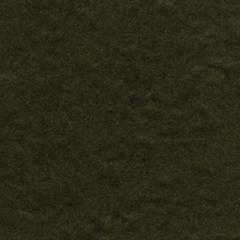 8.5 x 11 Cardstock Birchtone Dark