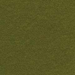 Bazzill Prismatics 12 x 12 Cardstock Spring Willow Dark