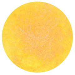 Dauber Yellow Rose