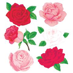 Jolee's Boutique Sticker Roses