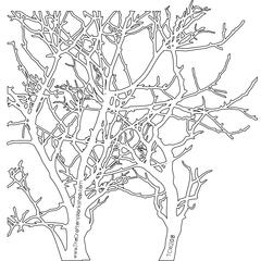 "The Crafter's Workshop 12"" x 12"" Design Template Branches"