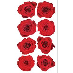 Sticko Photo Stickers Red Roses