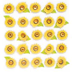 Repeat Sticker Sunflowers