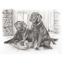 Large Sketching By Numbers Black Labradors