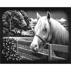 Scraperfoil Pony