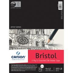 "Artist Series 2-Ply Vellum Bristol 9"" x 12"""