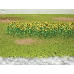 8-Pack Sunflowers