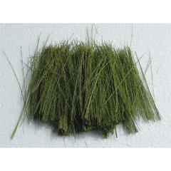 Architectural Model Light Green Field Grass