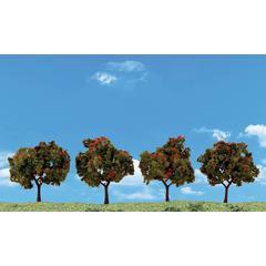 4-Pack Apple Trees