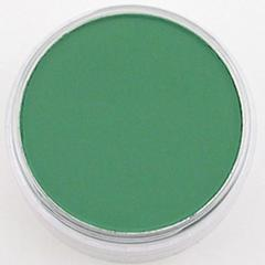 Ultra Soft Artists' Painting Pastel Permanent Green Shade