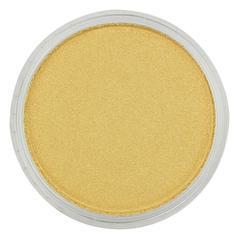 Ultra Soft Artists' Painting Pastel Light Gold 9ml