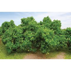 "Architectural Model Lemon Trees 2 1/4"" to 2 1/2"" 3-Pack"
