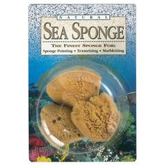Hydra Natural Sea Sponge