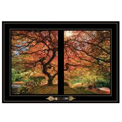 """First Colors of Fall I"" by Moises Levy, Framed Print, Black Window-Style Frame"