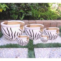 Set of 5 Fishbowl With Rope Wrapped Handles