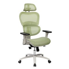 Techni Mobili High Back Mesh Executive Office  Chair with Neck Support, Green