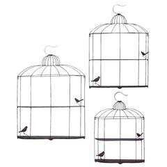 Bird Cage Design Metal Shelf In Metallic Silver Finish - Set Of 3