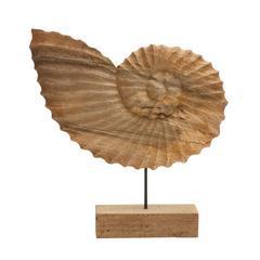 "Fantastic Wood Metal Shell 19""W, 20""H"