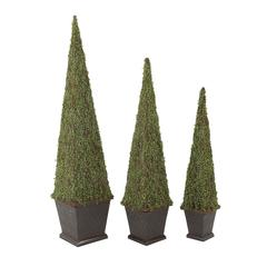 Benzara Set Of 3 Amazing Trees