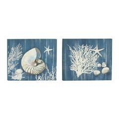 Benzara Beautiful Canvas Art Set Of 2