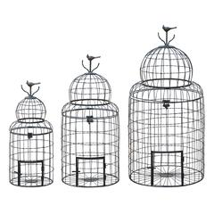 Victorian Style Bird Cage With `Perching Bird