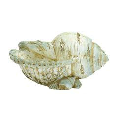 "Elegant And Classy 7"" Polystone Shell With Unique Design"