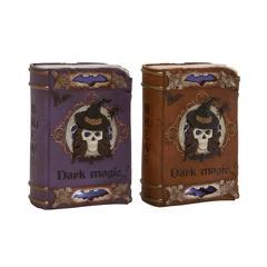 Benzara Astonishing 2 Assorted Led Magic Book